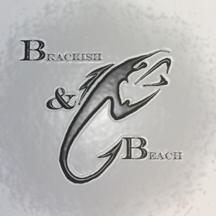 Brackish Beach