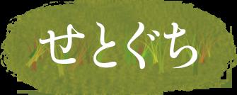 Setoguchi