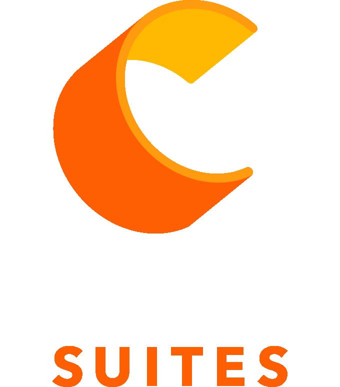 Comfort Suite Rive Gauche Lyon Centre