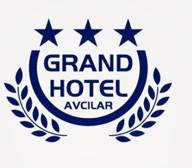 阿芙西拉大酒店