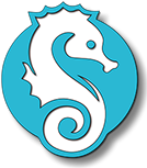 Hostel Little Seahorse