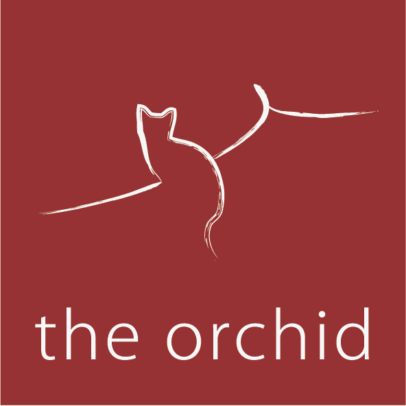 The Orchid Hotel, Beijing