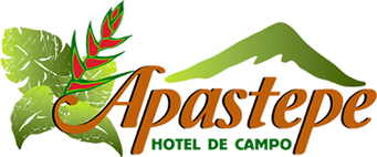 Hotel Apastepe