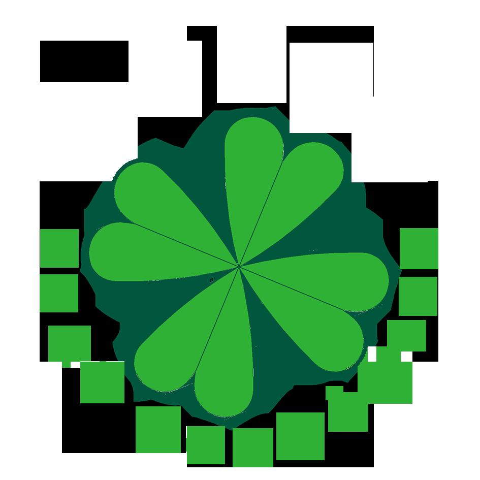 Flat Econômico