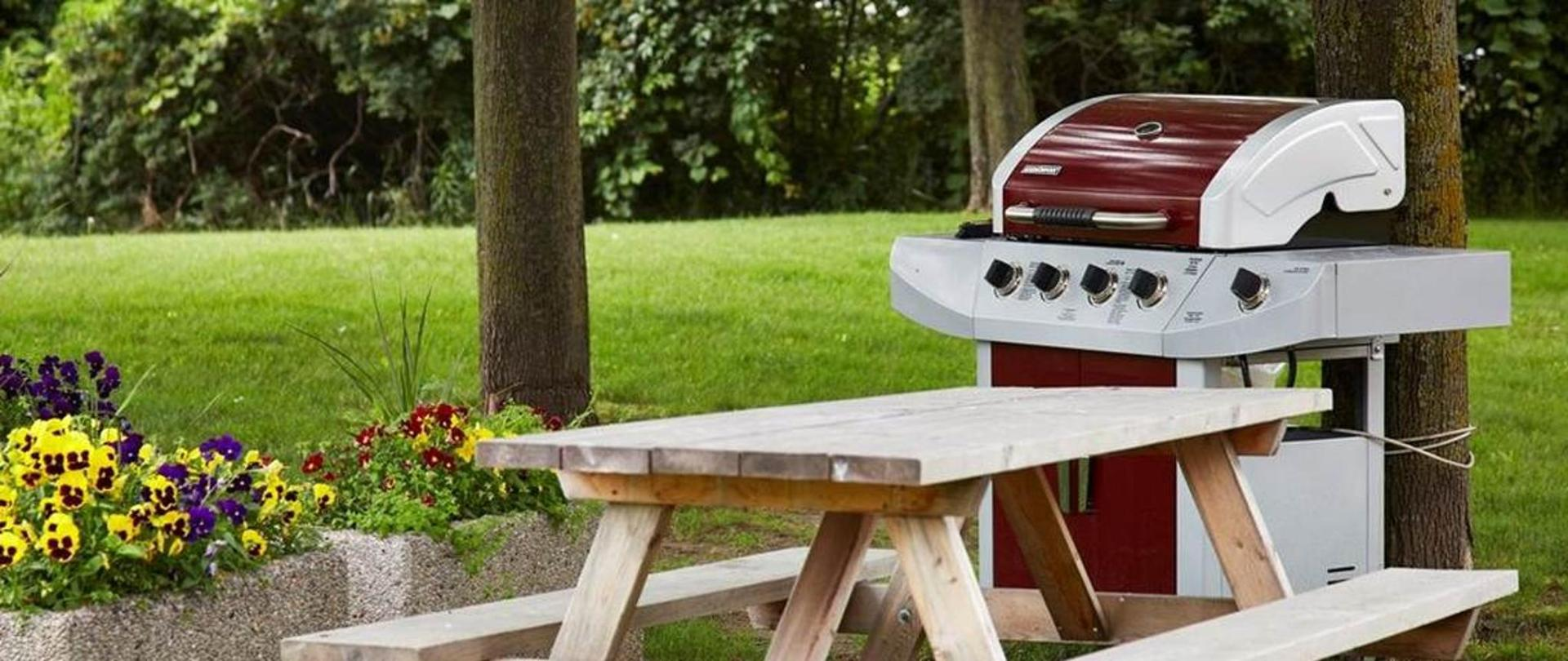 enjoy-our-picnic-and-bbq-area.jpg.1140x481_default.jpg