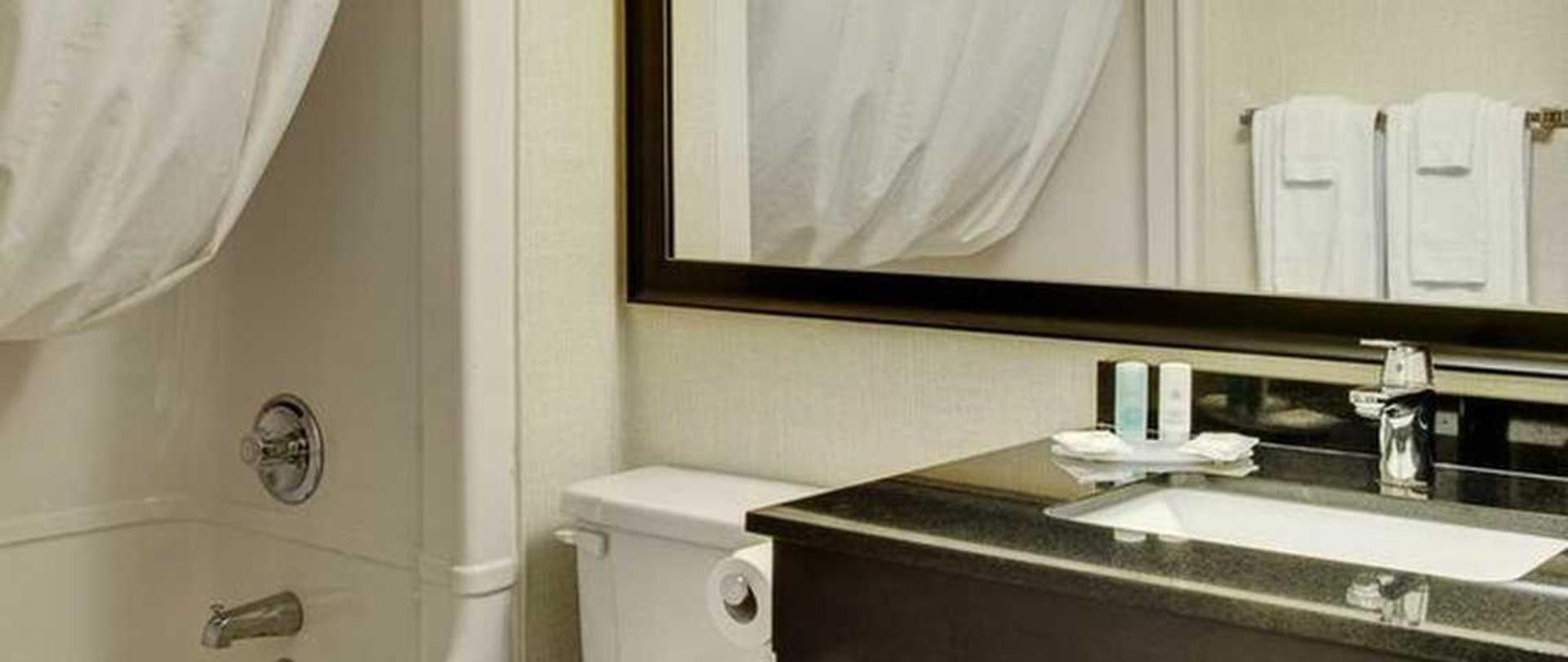 new-guestroom-bathroom-with-granite-vanity.jpg.1140x481_default.jpg