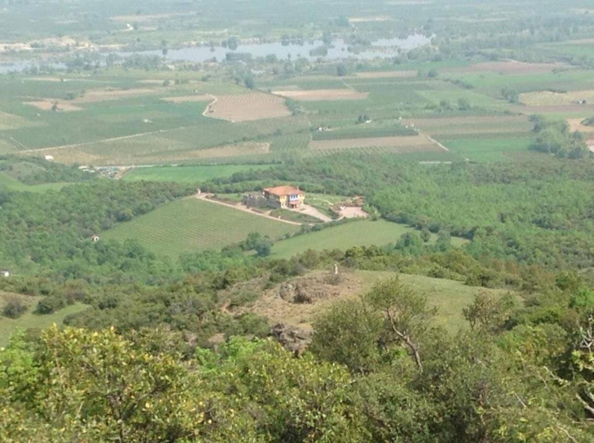 Wine trail view