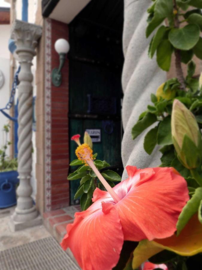 flor-hibisco-1.jpg