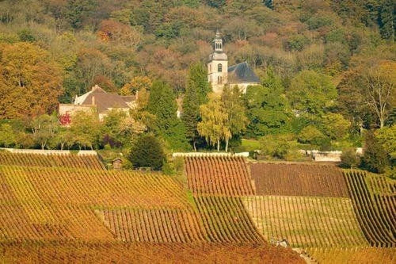 L'environnement de La Villa Saint Pierre