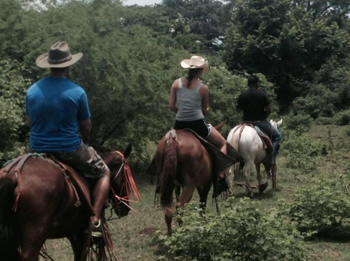 horse-tour-photo-2.JPG.1024x0.jpg