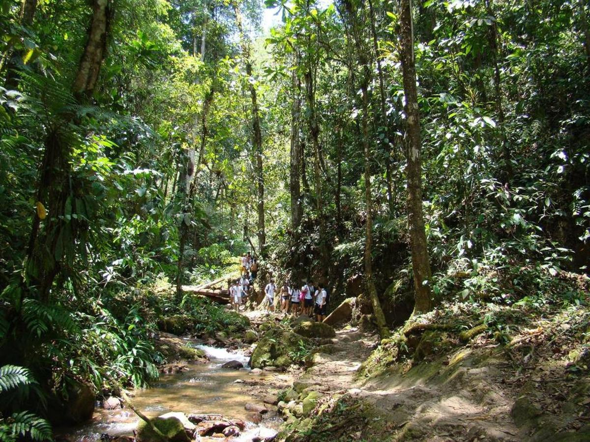 Flora y Fauna-Fundo-San-Jose-Junin-Peru-09.JPG