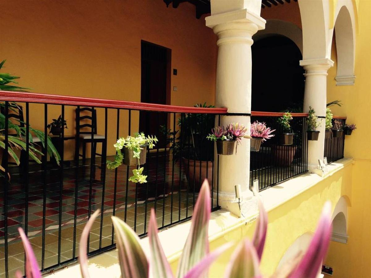 Hôtel - flowers.jpg
