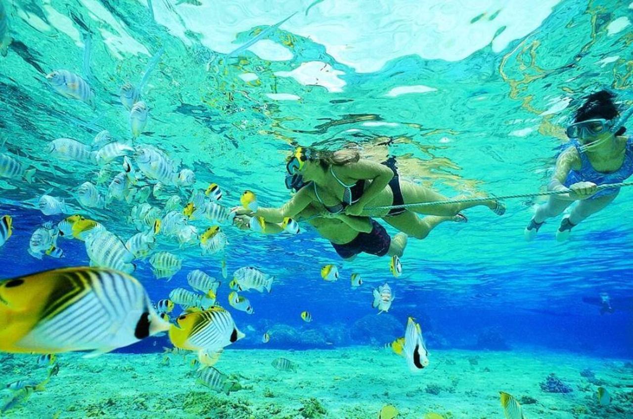 Actividades en Aruba