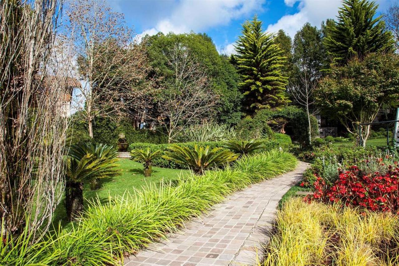 Jardim e áreas externas