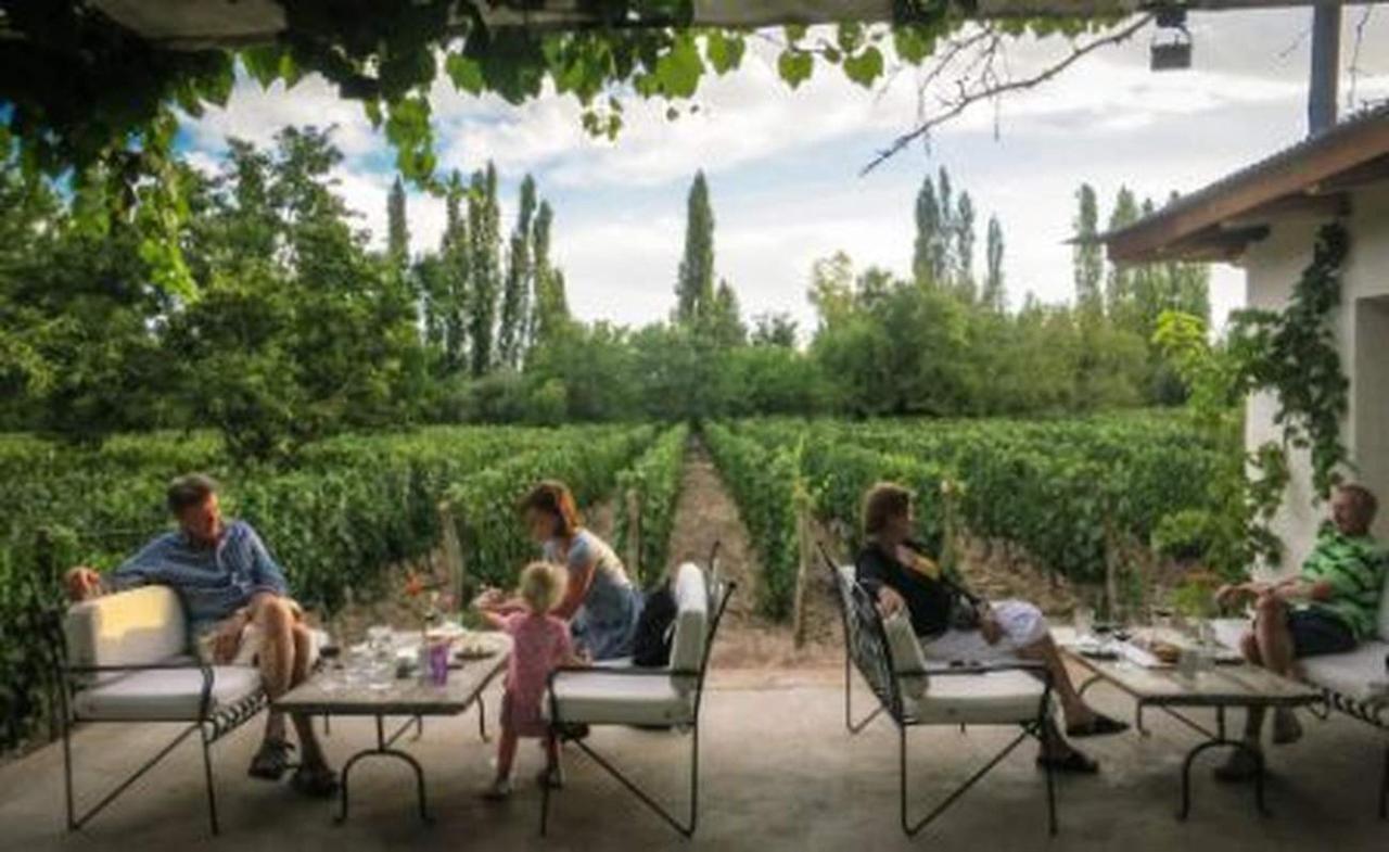 Wein Lounge Abendessen Zeit