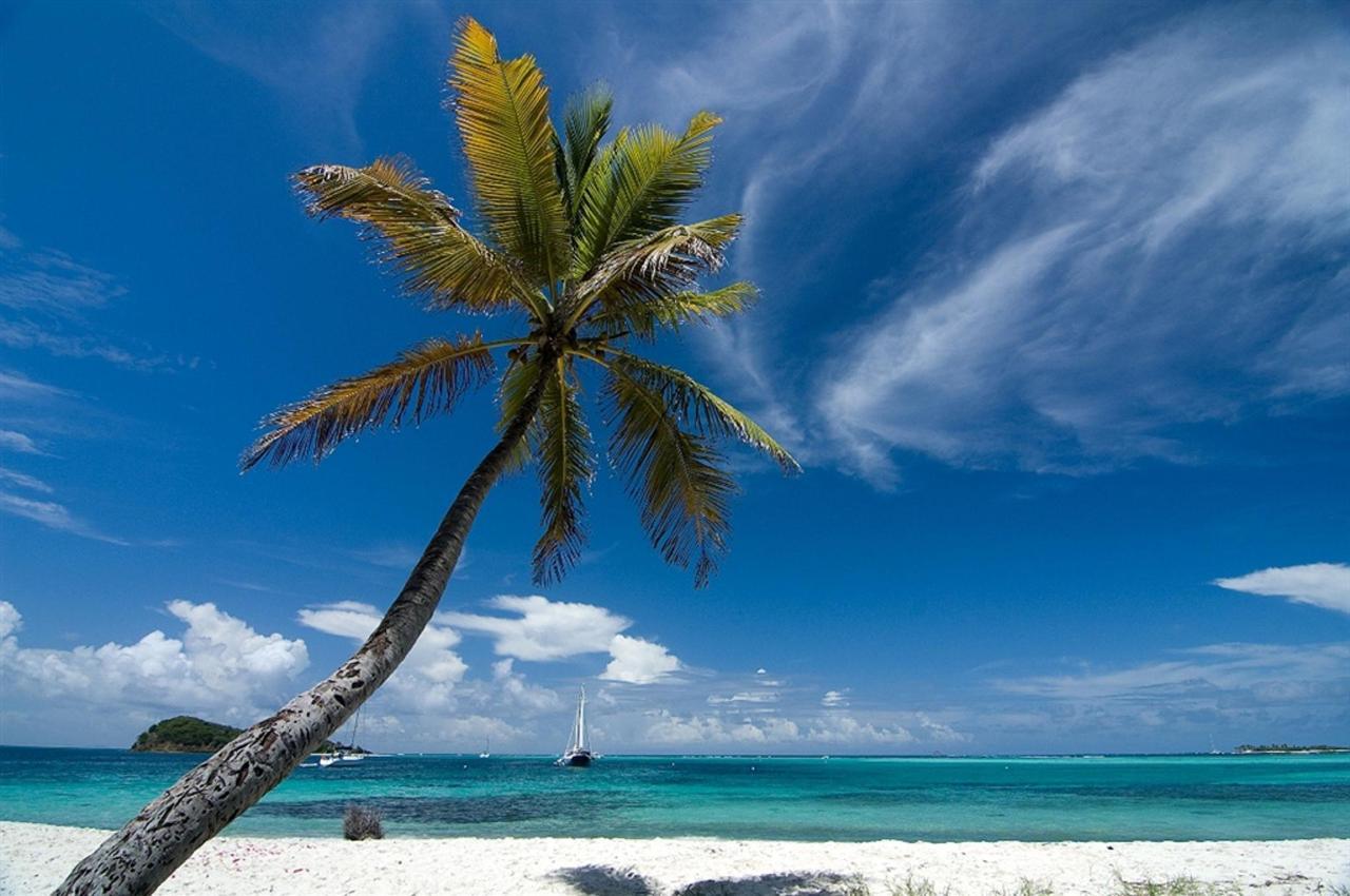 Grenadines Island Hopping