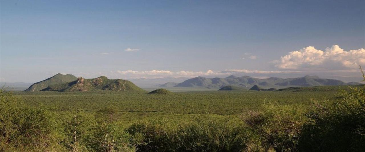 Wild, wide open spaces to explore on safari with Saruni.jpg