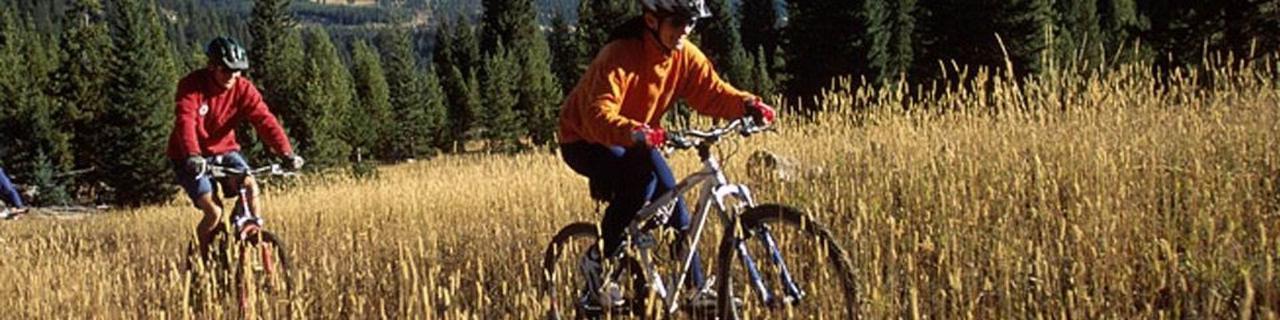 banner-photo-biking.jpg.1920x0.jpg