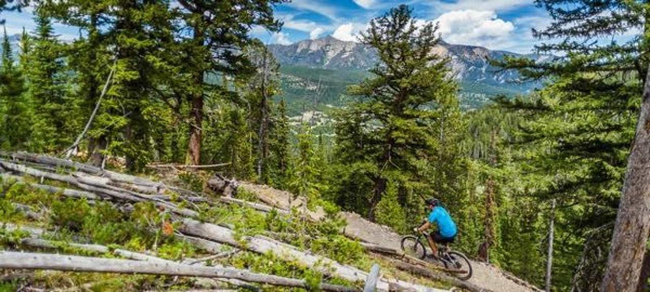 bike.jpg.1920x0.jpg