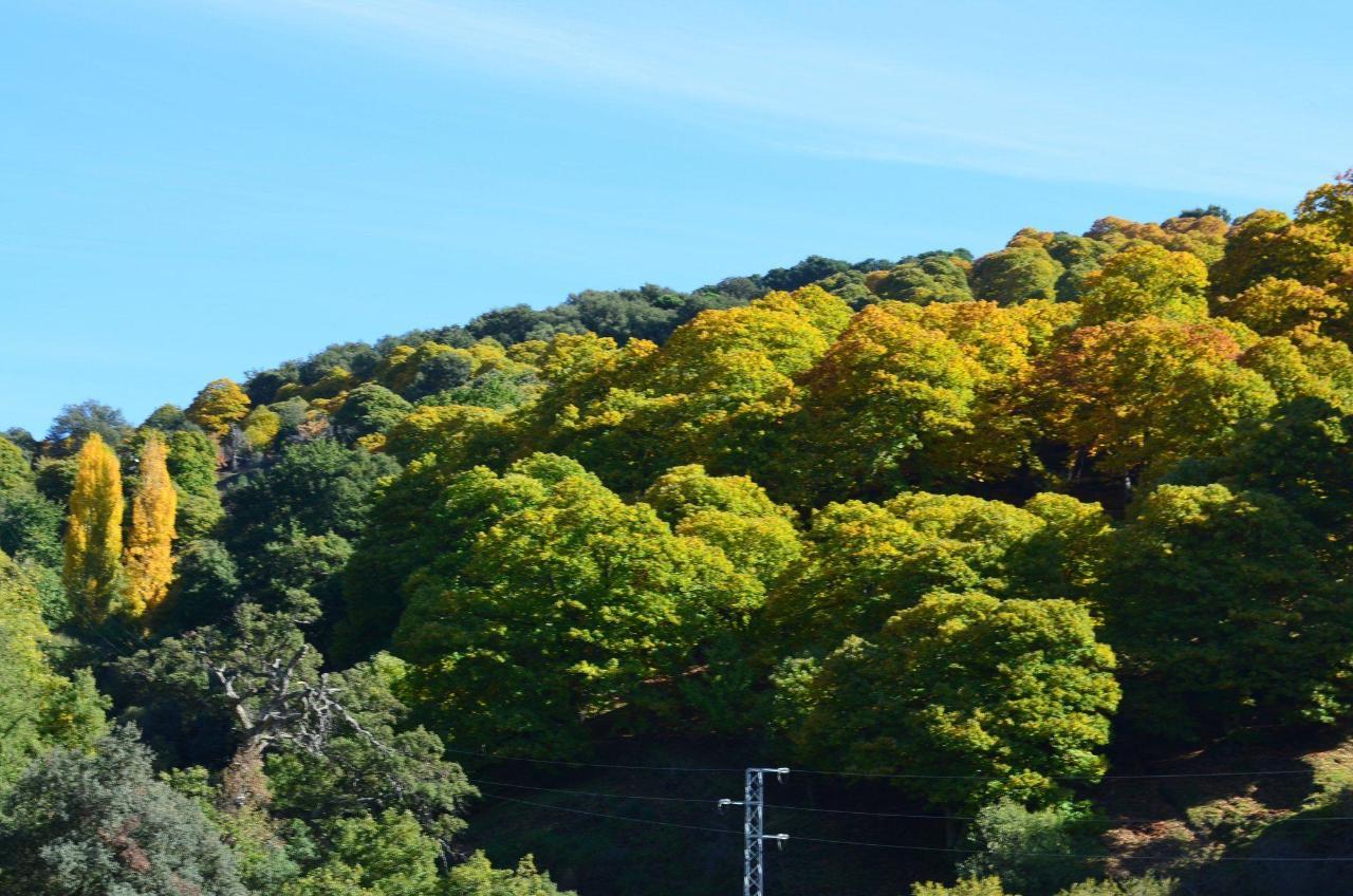 Genal Valley in autumn.JPG
