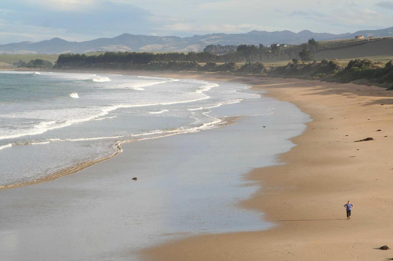 Local Kakanui beaches well worth a visit, only a few mins drive.JPG