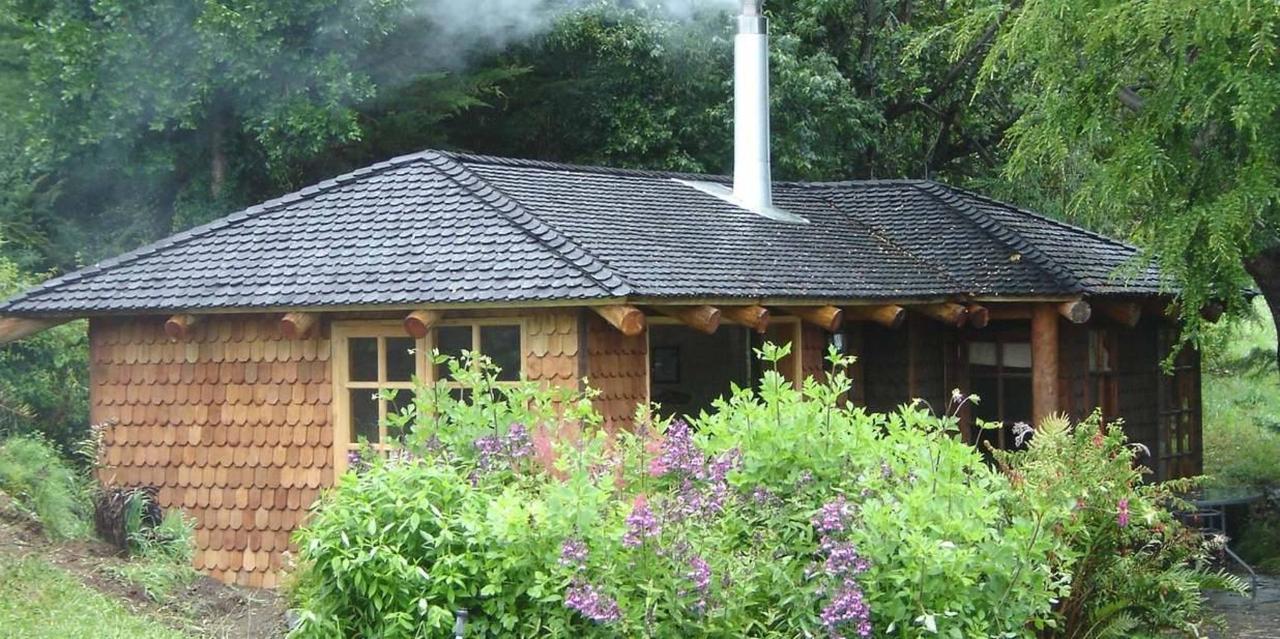 two-guest-cabins.monte-verde.JPG