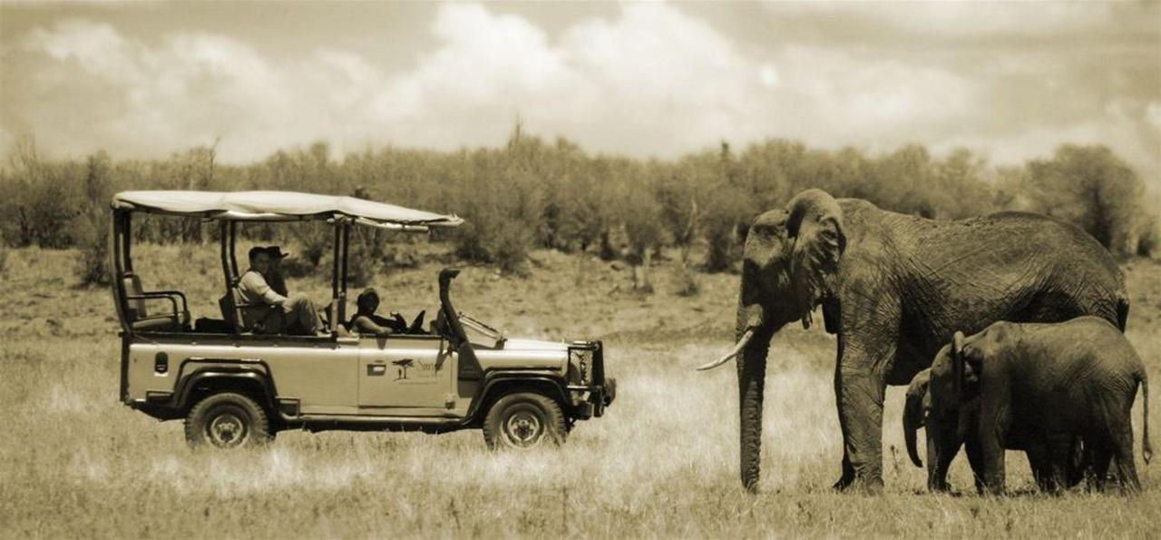 Mara car and elephant.jpg