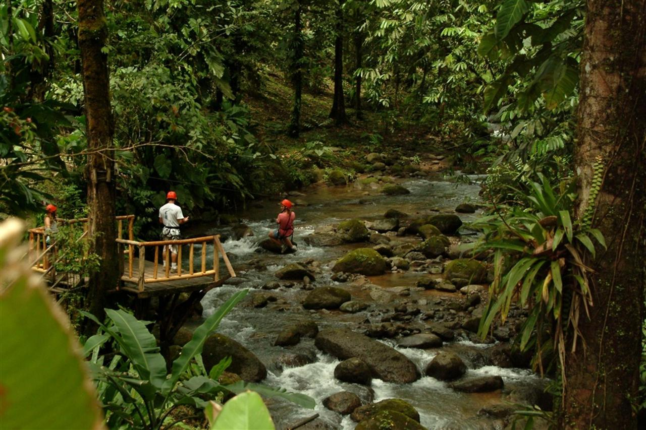 junglehiking.JPG.1024x0.JPG