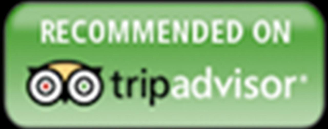 logo-home-tripadvisor.png.1024x0.png