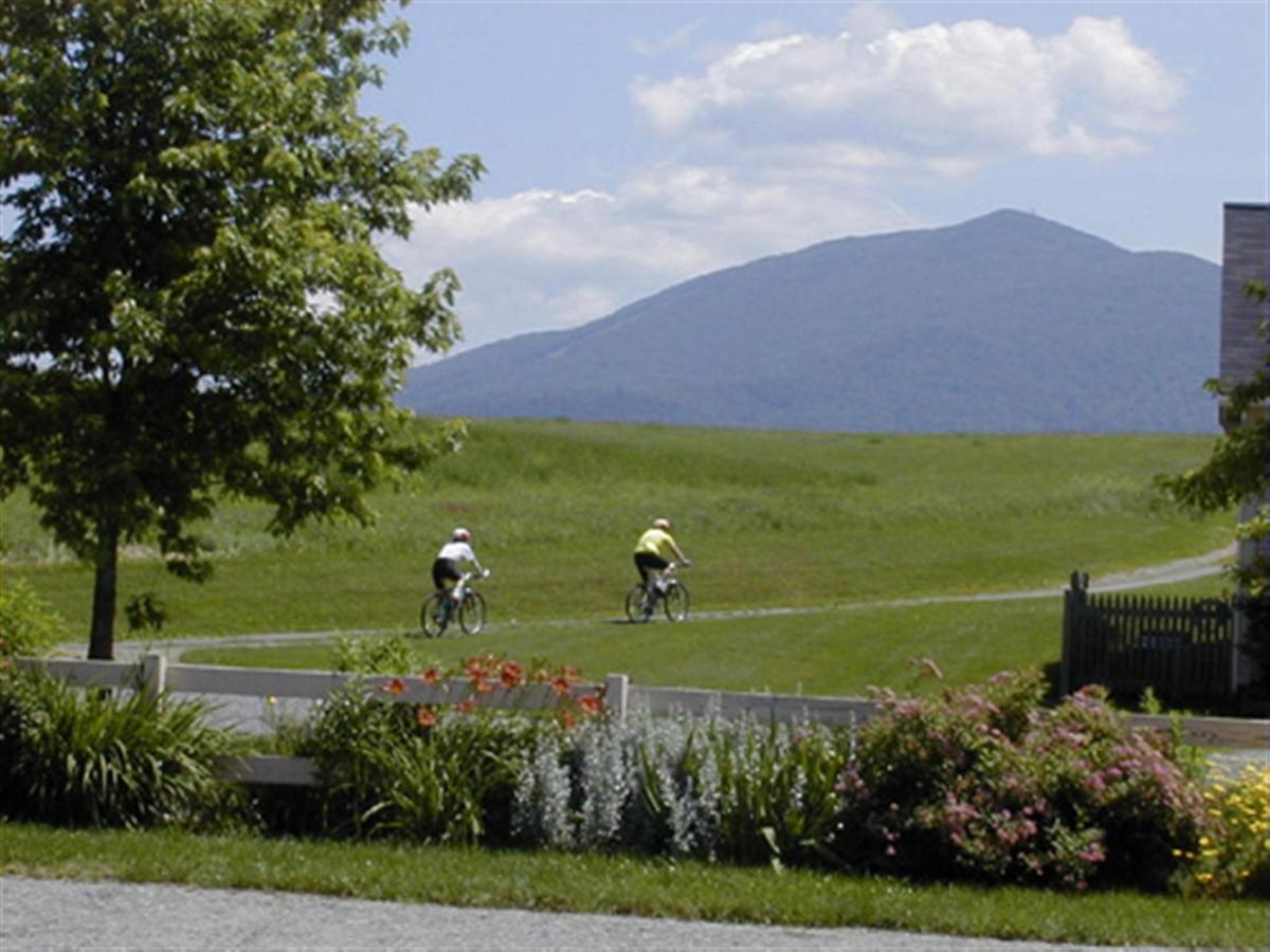 kt-bikers-3.jpg.1920x0.jpg
