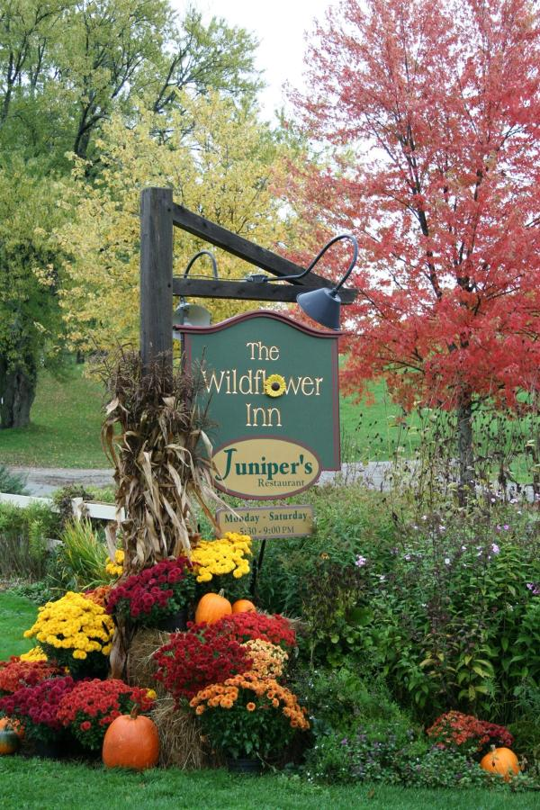wildflowerinn-sign2.jpg.1920x0 (1).jpg