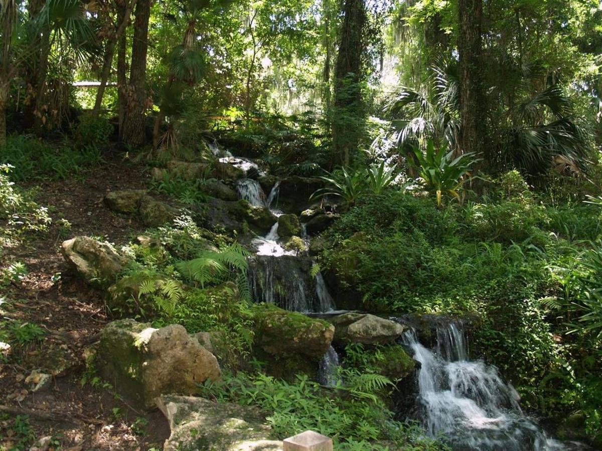 rainbow-springs-waterfall.JPG.1024x0.JPG