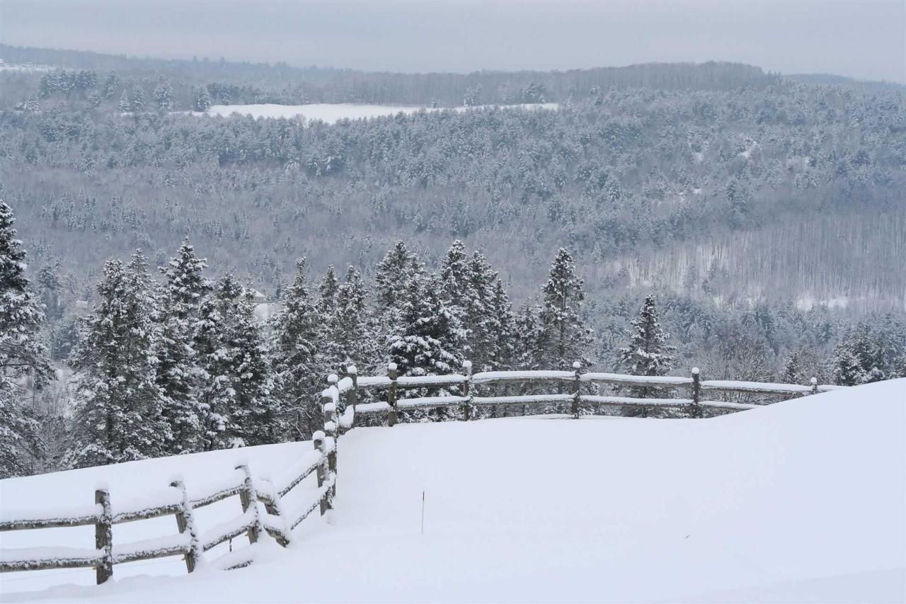 snow-fence-and-trees.jpg.1920x0.jpg