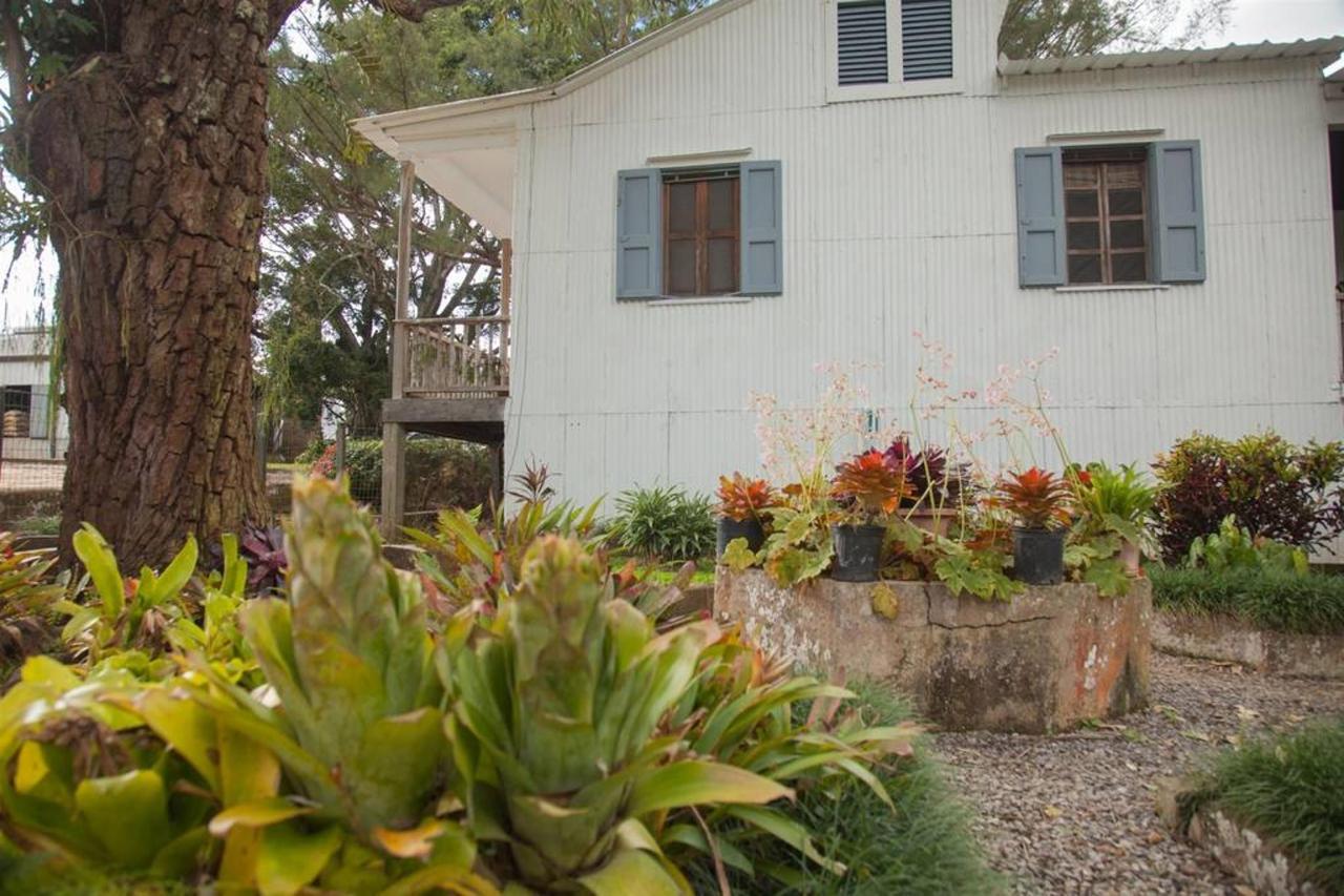 Hacienda_CVR44.jpg