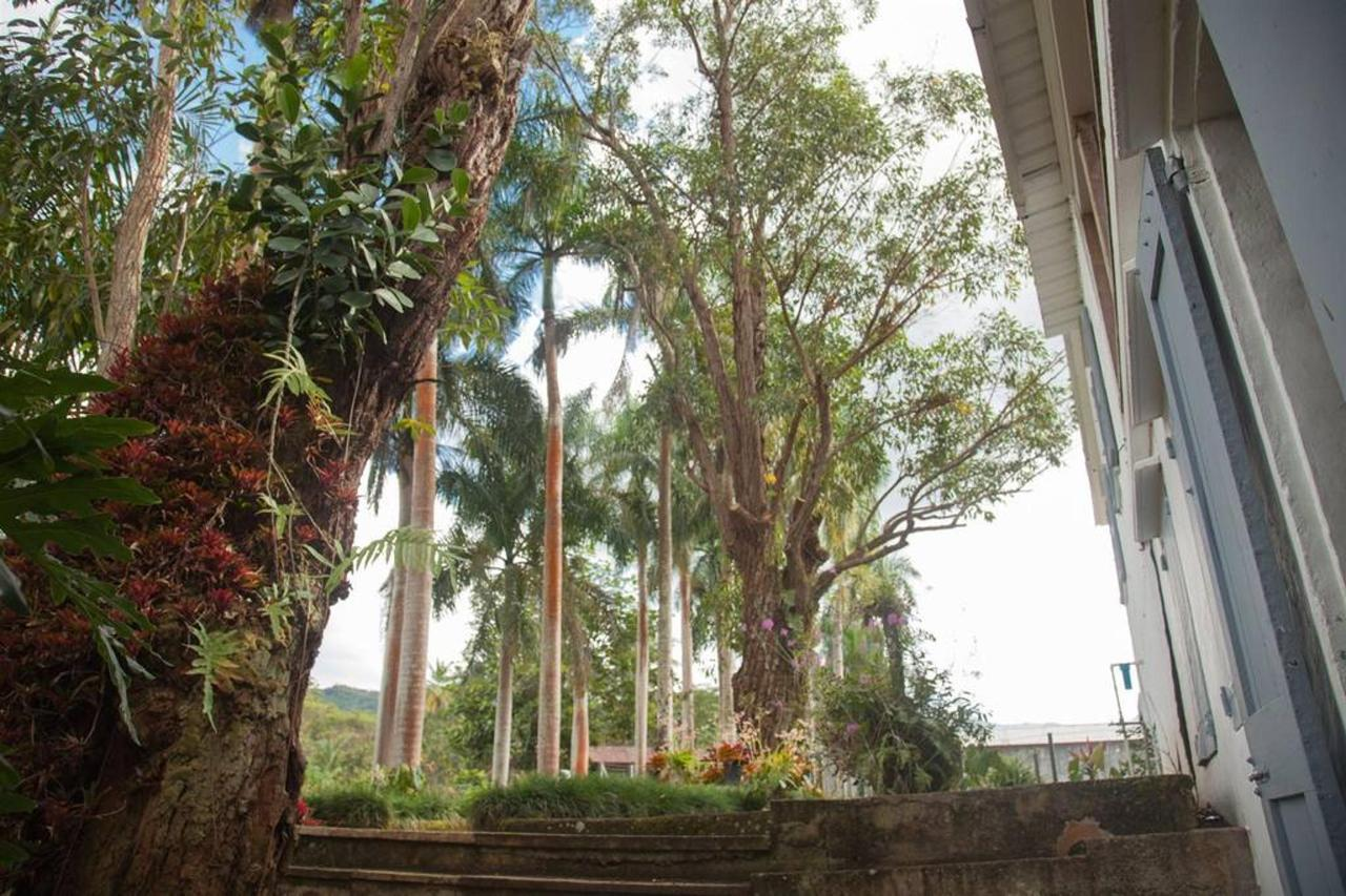 Hacienda_CVR46.jpg