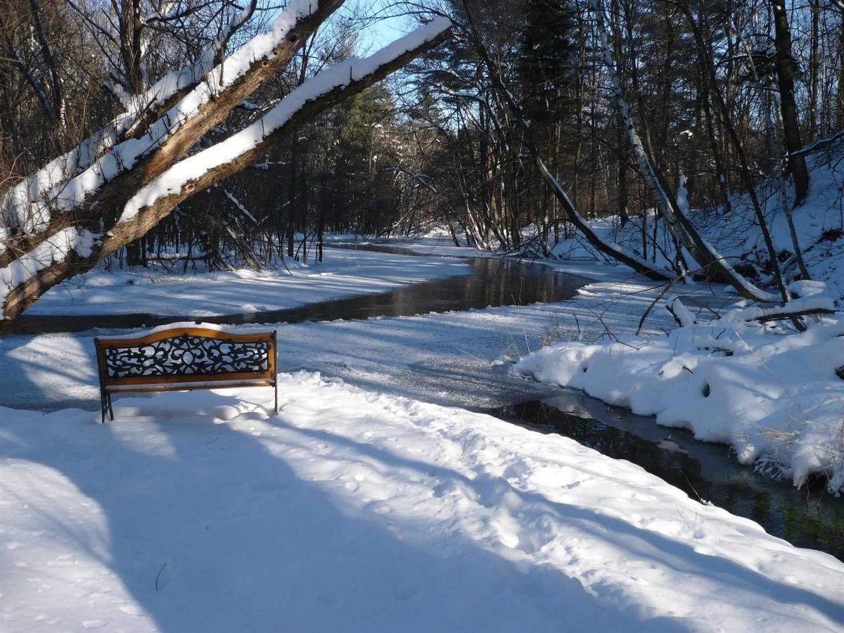 winterstreamriverbench.jpg.1920x0.jpg
