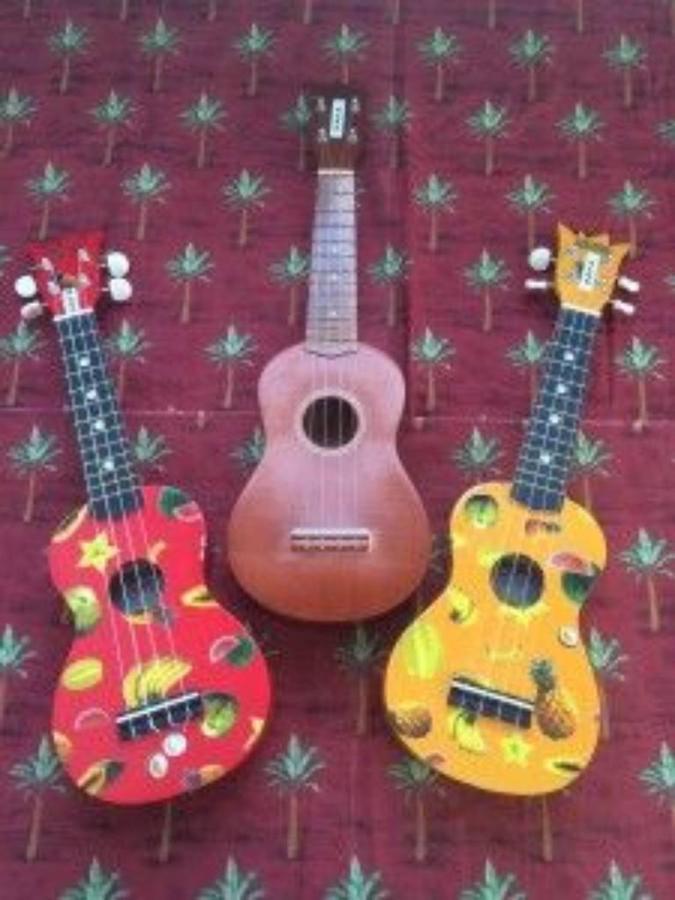 safa-ukulele-club.jpg.1024x0.jpg