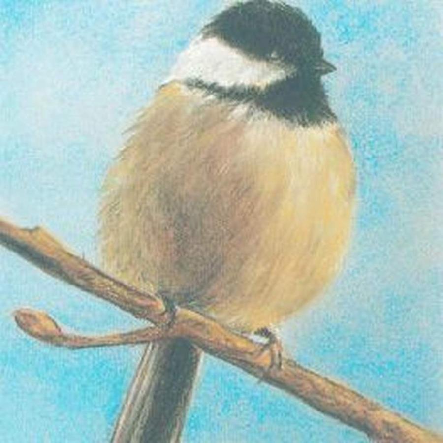 bob-bryson-bird-pastel-for-web.jpg.1024x0.jpg