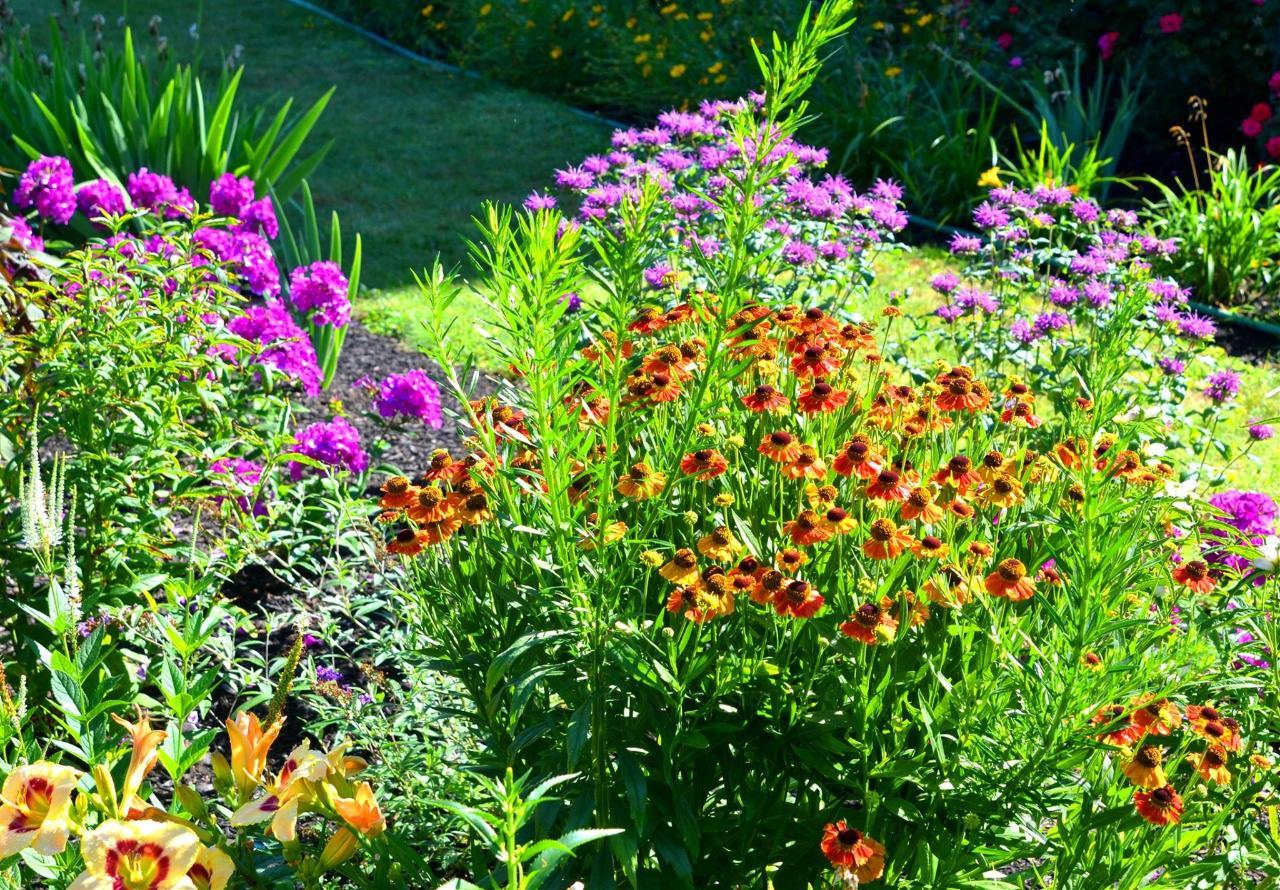 12-gardens50-1.jpg.1920x0.jpg