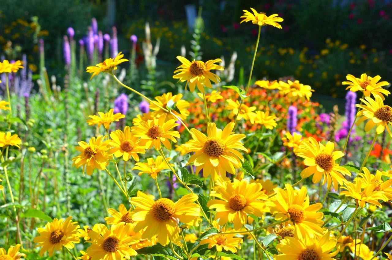12-gardens49-1.jpg.1920x0.jpg