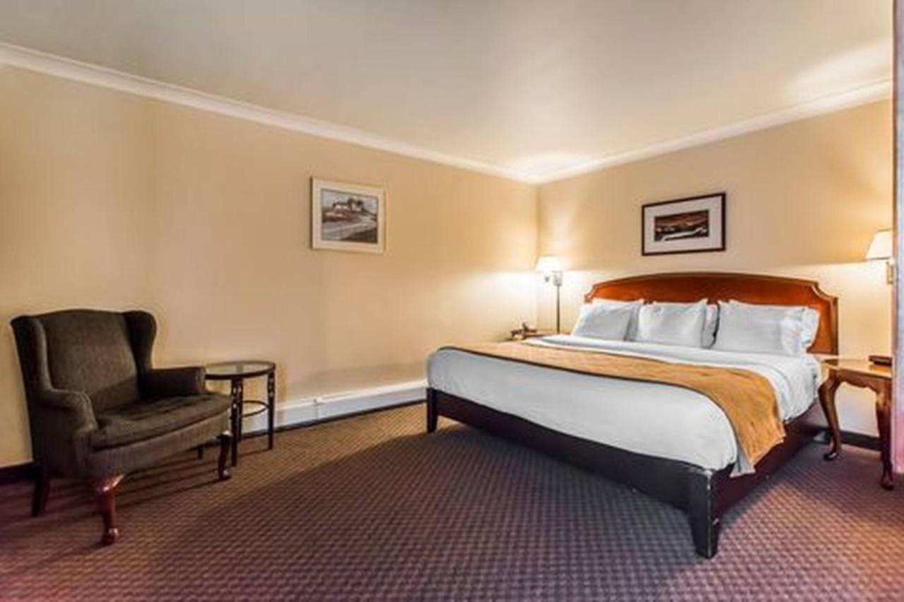 1 Bedroom Suite, Living Room, 1 King Bed.jpg
