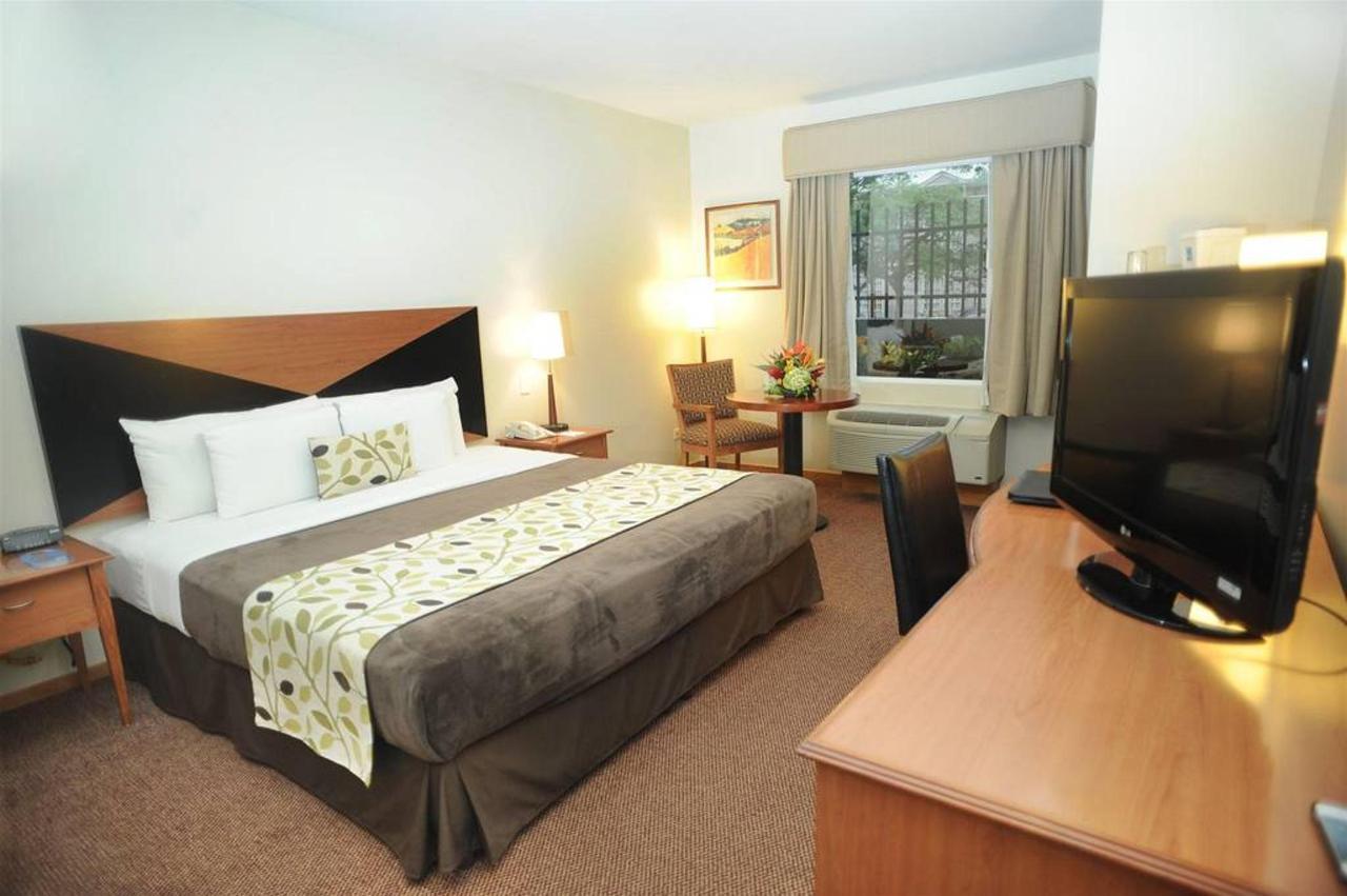 Rooms_PaseoLasDamas6.JPG
