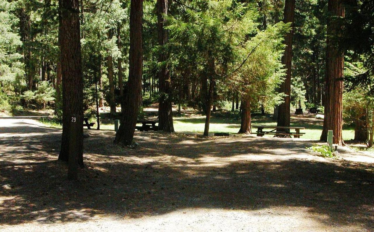 rrp-campground-lawn.jpg.1080x0.jpg