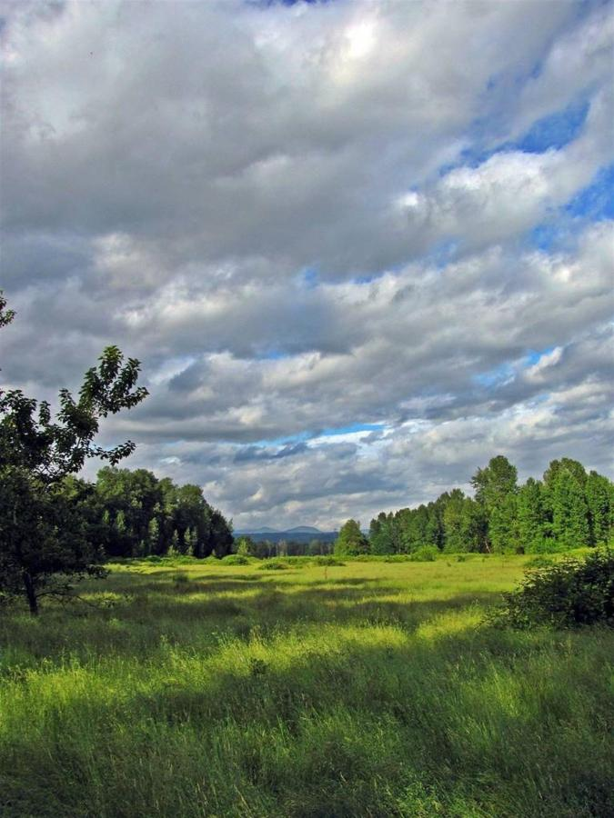 Thousand Acres Sandy River Delta - photo Loree Harrell.jpg