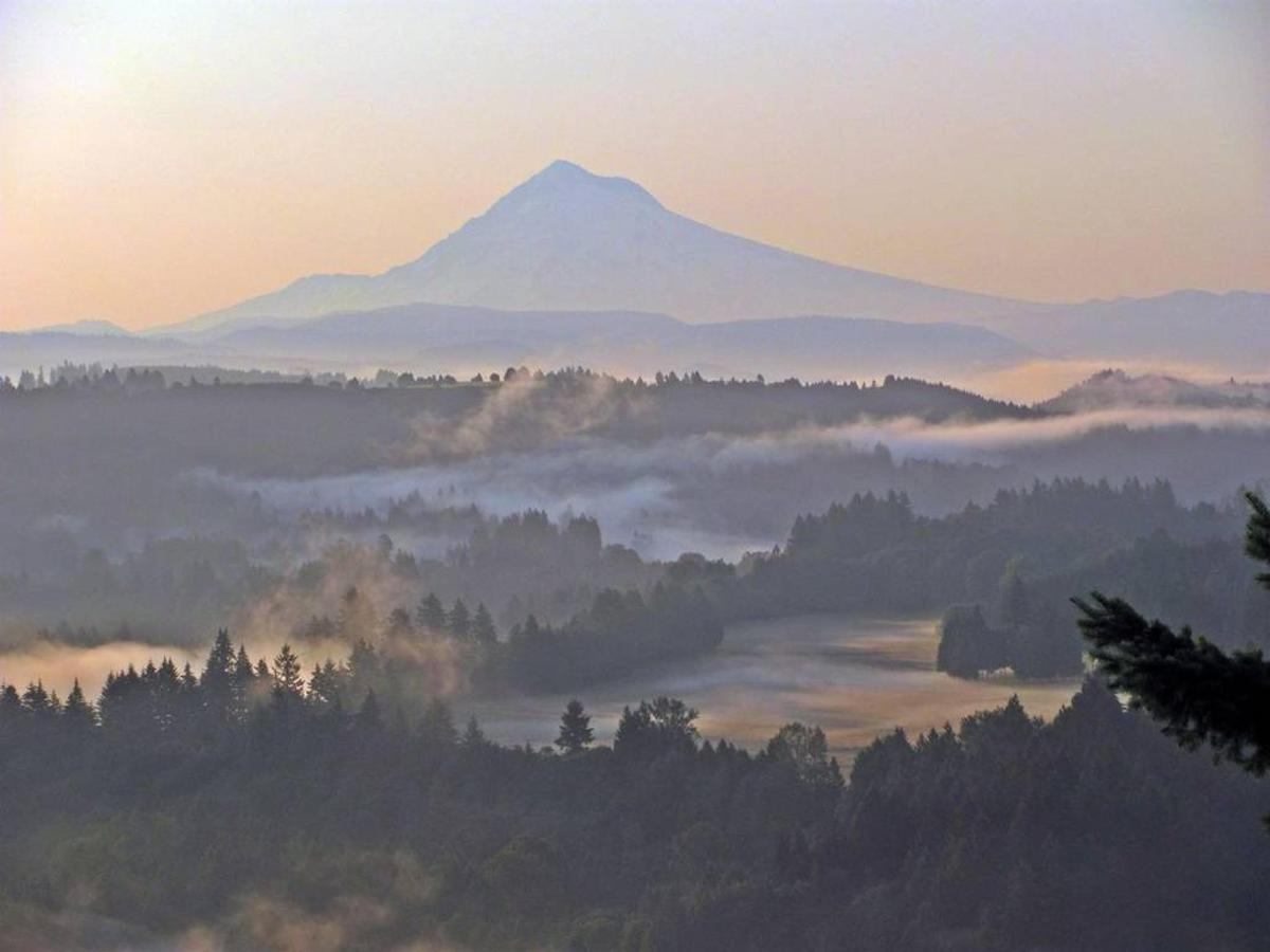 Mt. Hood from Jonsrud Viewpoint- photo Loree Harrell.jpg