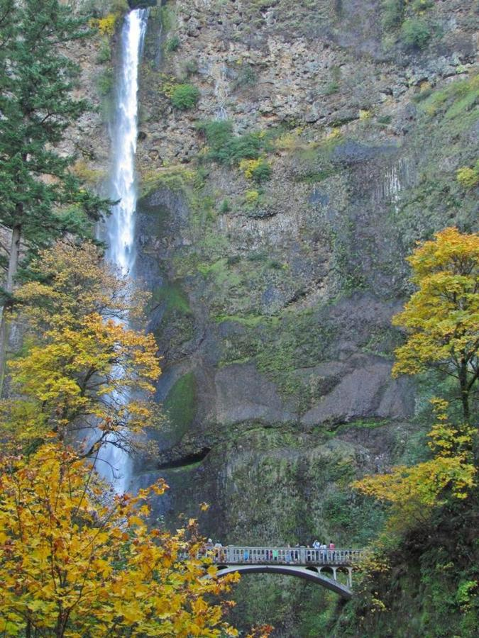 Multnomah Falls- photo Loree Harrell.jpg