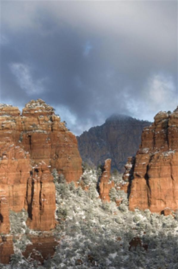 snow-on-the-red-rocks.jpg.1024x0.jpg