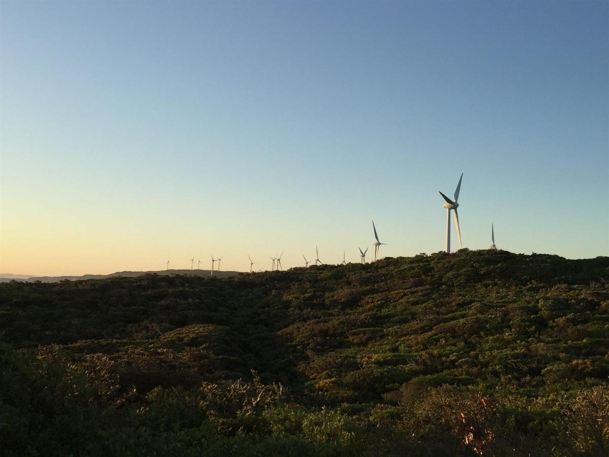 windfarm-sunsey.jpg