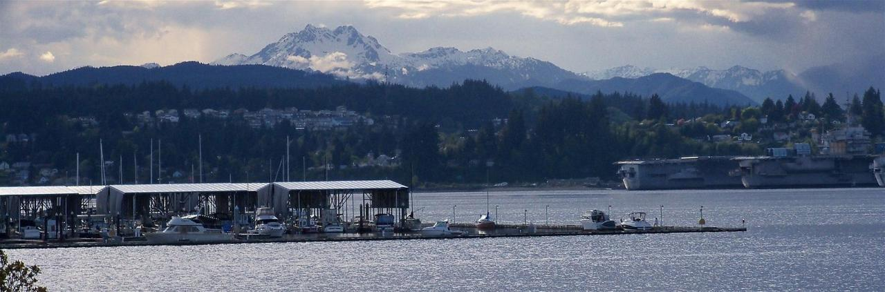 view-of-port-orchard-marina-with-olympic-mountains-in-background.JPG