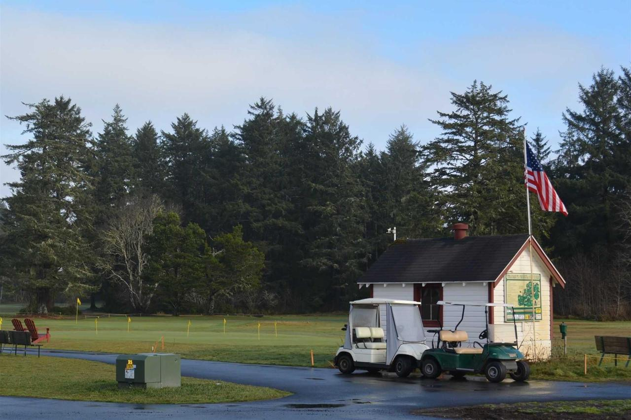 golf2.jpg.1920x0.jpg